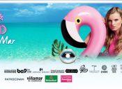Feria Viste la Ciudad En Viña Del Mar 2016