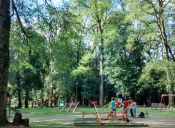 5 Plazas y Parques imperdibles de Valdivia: ruta alternativa