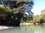 Imágenes Inspiradoras: Río Liquiñe, XIV Región