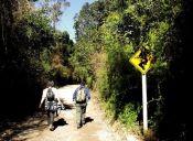 Reserva Nacional Nonguen, refugio natural de Concepción será pronto Parque Nacional