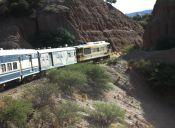 De la Quiaca a Oruro: un viaje en tren que atraviesa a Bolivia