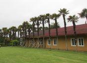 Recorriendo el museo Pedro Enrique Zañartu y la desembocadura del río Biobío