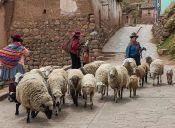 7 cosas que todo mochilero debe saber si va a: Perú