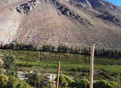 Camping en los Valles de la IV Región: Naturaleza y vida social