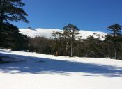 Centros de Ski del sur de Chile