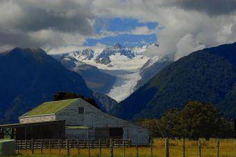 La experiencia Kiwi, mi primera visión de Nueva Zelanda