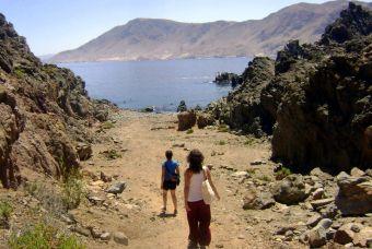 Viaja al Parque Nacional Pan de Azúcar en tour guiado junto a Sernatur Atacama
