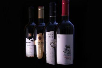 Andes Wine abre su primer Duty Free en zona oriente de Santiago, Chile