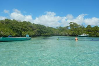 Tips para viajar a Galápagos