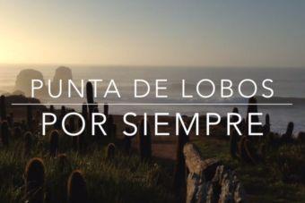 Punta de Lobos por siempre, salvando las olas de Pichilemu
