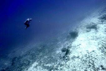 Sorprendente video de buceo libre siguiendo las corrientes del océano
