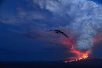 Volcán Wolf en Isla Isabela, Galápagos, hace erupción