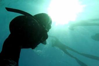 Buceo libre/apnea en Quintay: Naufragio El Falucho