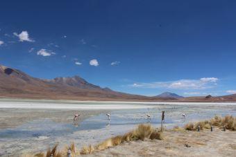 10 motivos para mochilear por Bolivia