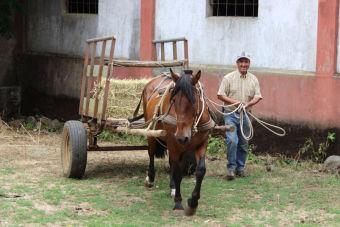 Recorriendo Chile: Pailahueque, un pueblo escondido en nuestro sur