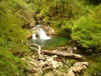 Mochileros por Sudamérica: Parque Pumalín, Patagonia, Chile