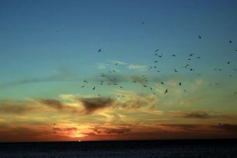 Recorriendo Chile: Laguna verde, tranquilidad a un paso de Valparaíso
