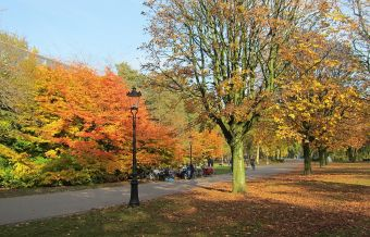 Imágenes inspiradoras: Amsterdam en otoño