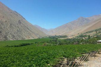 Recorriendo Chile: Valle del Elqui, Región de Coquimbo