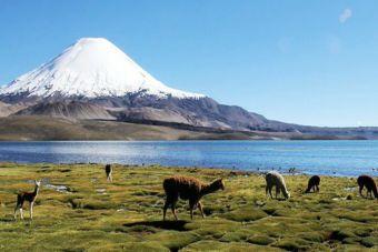 Turismo aventura natural en Chile: 3 atractivos del Norte Grande