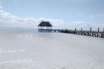 7 motivos por los que amo Playa del Carmen