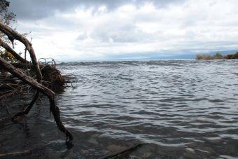 El encanto de Rio Pescado (Puerto Varas)