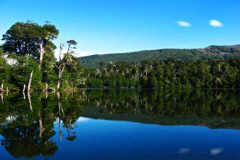 ¿Qué es y cómo funciona el Pase Anual de Parques Nacionales en Chile?