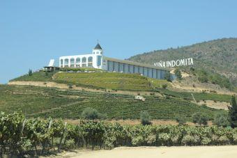 La ruta del vino del Valle de Casablanca, Chile