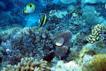 Los 10 mejores destinos para descubrir la naturaleza