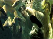 Diálogo #1: Yo vi Sin Respiro 2000 en Centro Nave