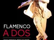 "Danza: ""Flamenco a Dos"" en Teatro Nescafé de las Artes"