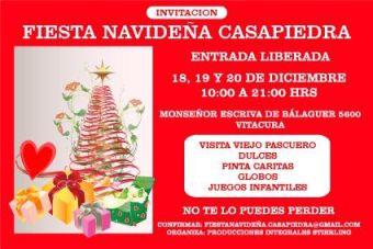 Expo navidad 2015 en casa piedra saliendo for Viveros en nunoa