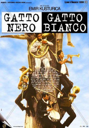 Gato Negro, Gato Blanco en Cine Arte Normandie