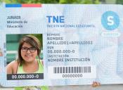 Este domingo finaliza el proceso de captura temprana de la TNE 2016