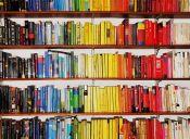 Las 10 mejores picadas de libros usados
