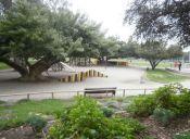16 parques al aire libre en Santiago que puedes conocer estas vacaciones