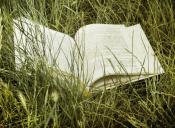 Los 10 mejores sitios para buscar resúmenes de libros