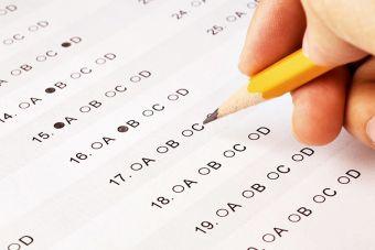 ¿De qué se trata el test de formación ciudadana que se incluirá en la Prueba Simce?