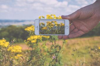 6 tips para mejorar tus fotos en Instagram