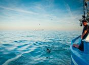 Mujer australiana bate récord mundial nadando 42 horas sin parar