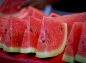 ¿Cuánta agua tienen las frutas?