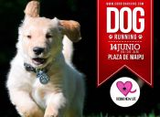 Dog Running corrida por el rescate animal - 14 de junio 2015