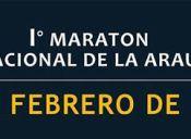 Maratón Internacional de la Araucanía - 28 de febrero 2016