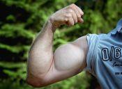 4 consejos para mejorar la musculatura de tus brazos