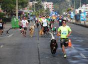 Perro Running - 19 de julio 2015