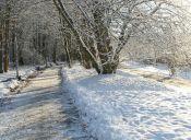 Las complicaciones de correr en invierno