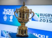 Semifinales Mundial de Rugby 2015