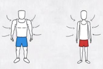Las diferencias entre un velocista y un maratonista