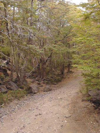 Ruta Trail Running: Shangri La, Valle Las Trancas, Termas de Chillán