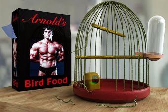 La vida y secretos de Arnold Schwarzenegger